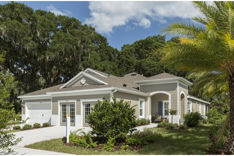Lithia Florida New Master Homes Communities