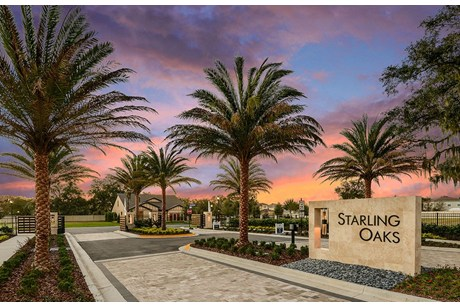 Starling Oaks Riverview Florida New Homes Community